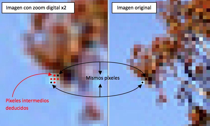 Los píxeles de nueva aparición en la imagen interpolada se deducen a partir de los píxeles próximos que se heredan de la imagen original